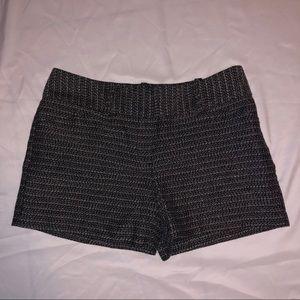 Women's Shorts, Ann Taylor Signature Black & White